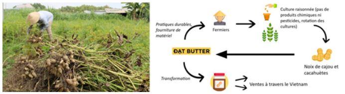 Dat butter, protection durable de beurre de cacahuète